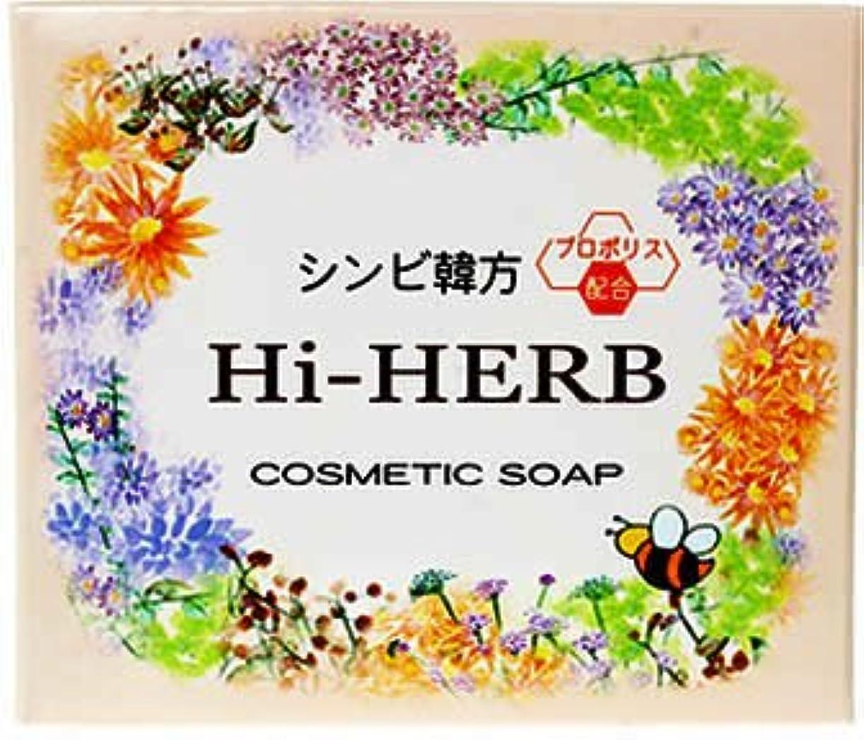 植物の休みコミットシンビ 韓方ハイハーブ石鹸 100g
