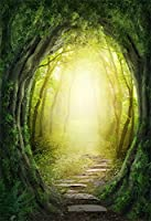 aofoto 3x 5ft赤ちゃん写真スタジオの背景幕幼児用写真撮影背景Dreamy Forest Trees Groveストーンパス子幼児Kid Artisticポートレート自然風景ビデオPropsデジタル