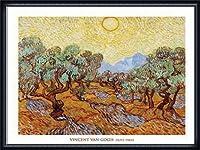 ポスター フィンセント ファン ゴッホ Olive Trees 1889 額装品 ウッドハイグレードフレーム(ネイビー)
