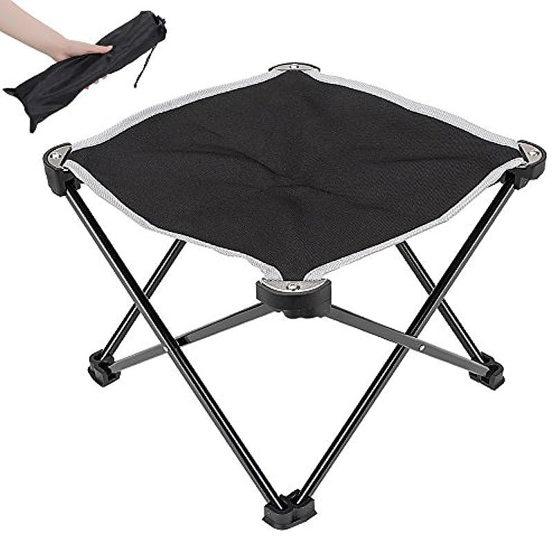 修正深遠細心の【折りたたみチェア?アウトドア用】 Linkax キャンプチェア コンパクト 軽量 組み立て椅子 耐荷重80kg 専用ケース付き (折り畳みチェア)