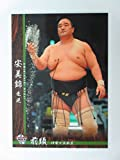 BBM2016大相撲カード■レギュラーカード■No.17安美錦 竜児/前頭