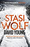 Stasi Wolf: A Gripping New Cold War Thriller for Fans of Child 44 (The Oberleutnant Karin Müller series)