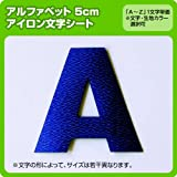 アルファベットワッペン(5cm) ※A~Zまで1文字単位でお申込み頂けます 生地:フェルトタイプ (黒) ゴシック