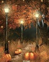 ホラーハロウィンフォレスト照明写真の背景幕PumpkinカーニバルパーティーファミリStudioフォト背景 8X12FT TR-9534-250X375CM