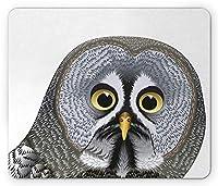 動物のマウスパッド、グラフィックイラストフクロウの頭かわいい鳥の知恵のシンボル芸術的な図、標準サイズの長方形滑り止めゴムマウスパッド、ブラウングレーイエロー
