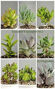 [DJ., Plugmatics]のSucculent & Succulent Vol.2 (English Edition)