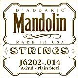 D'Addario ダダリオ マンドリン用バラ弦 2nd .014 J6202 【国内正規品】