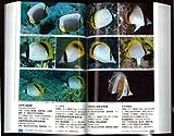 日本の海水魚 (山溪ハンディ図鑑) 画像