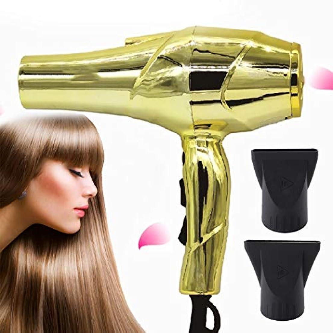 窒息させる代表受け入れたドライヤーACモーターを搭載する巻き毛の軽量のイオンのドライヤーのための専門のヘアードライヤーの陶磁器のドライヤー-gold