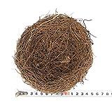 ACHICOO 巣 鳥 人工 イースター 庭 装飾 小道具 シミュレーションの卵