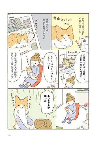 ネコちゃんのスパルタおそうじ塾
