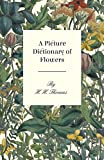 A Picture Dictionary of Flowers