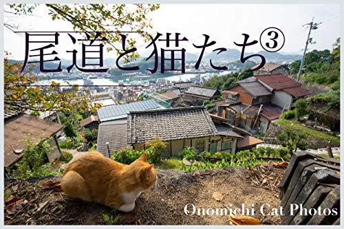 尾道と猫たち3