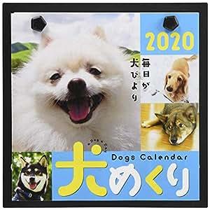 シーオーツー 犬めくり 2020年 カレンダー 日めくり CK-D20-01