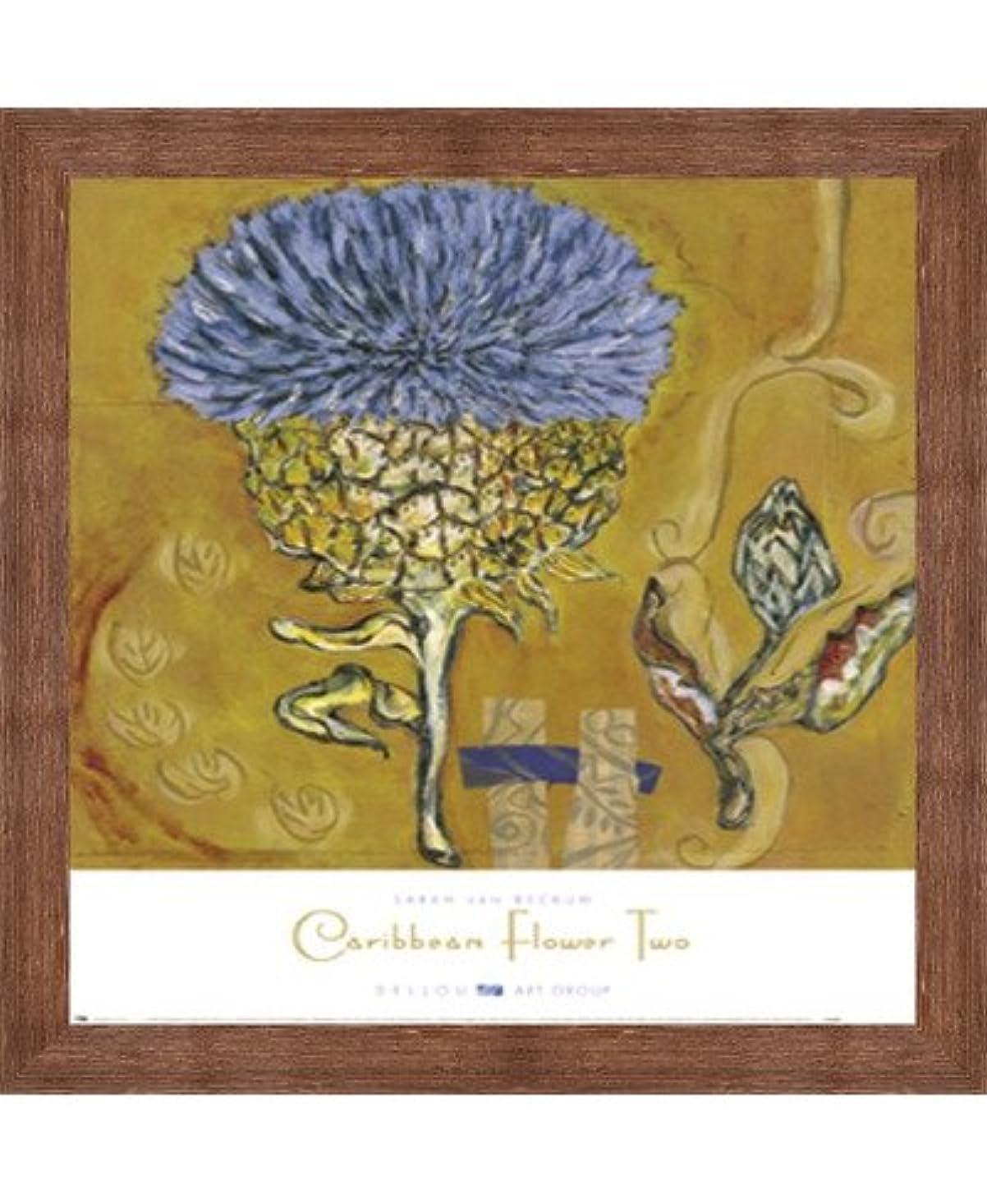 モック息切れ遷移Caribbean 2つ花by Sarah Van Beckum – 18 x 22インチ – アートプリントポスター LE_68126-F10570-18x22