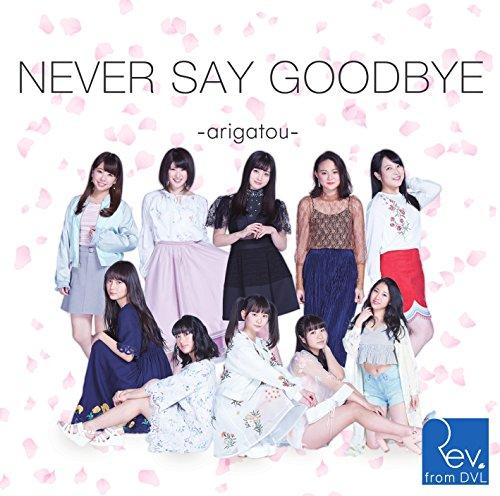 【Amazon.co.jp限定】NEVER SAY GOODBYE ~arigatou~(Type-B)(・・・