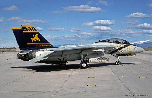 1/48 F-14A トムキャット VF-213 ブラックライオンズ