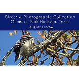 Birds: A Photographic Collection: Memorial Park Houston, Texas (English Edition)