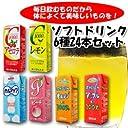 ソフトドリンク6種類24本セット(アセロラ レモン カルアップ オレンジ100% アップル100% ピーチ)紙パックジュース/エルビー
