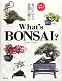 What's BONSAI ? (Cool Japan)