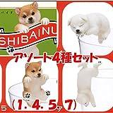 PUTITTO 柴犬 SHIBAINU [アソート4種セット (1.赤毛(のりこえ)/4.白毛(いねむり)/5.赤毛(ひっかかり)/7.白毛(ぶらさがり))]