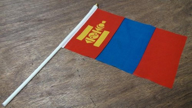 手旗 モンゴル / 手旗 国旗 モンゴル 世界 ミニ 国旗 手旗