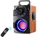 TAMPROAD Portable Bluetooth Speakers with woofer, FM Radio, LED Lights, EQ, Booming Bass, Bluetooth 5.0 Wireless Stereo Power