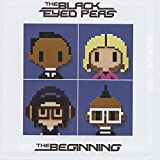 BEGINNING LTD.EDIT. [12 inch Analog]