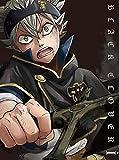 【Amazon.co.jp限定】ブラッククローバー Chapter I*Blu-ray(描き下ろし絵巻バスタオル「アスタ」付)