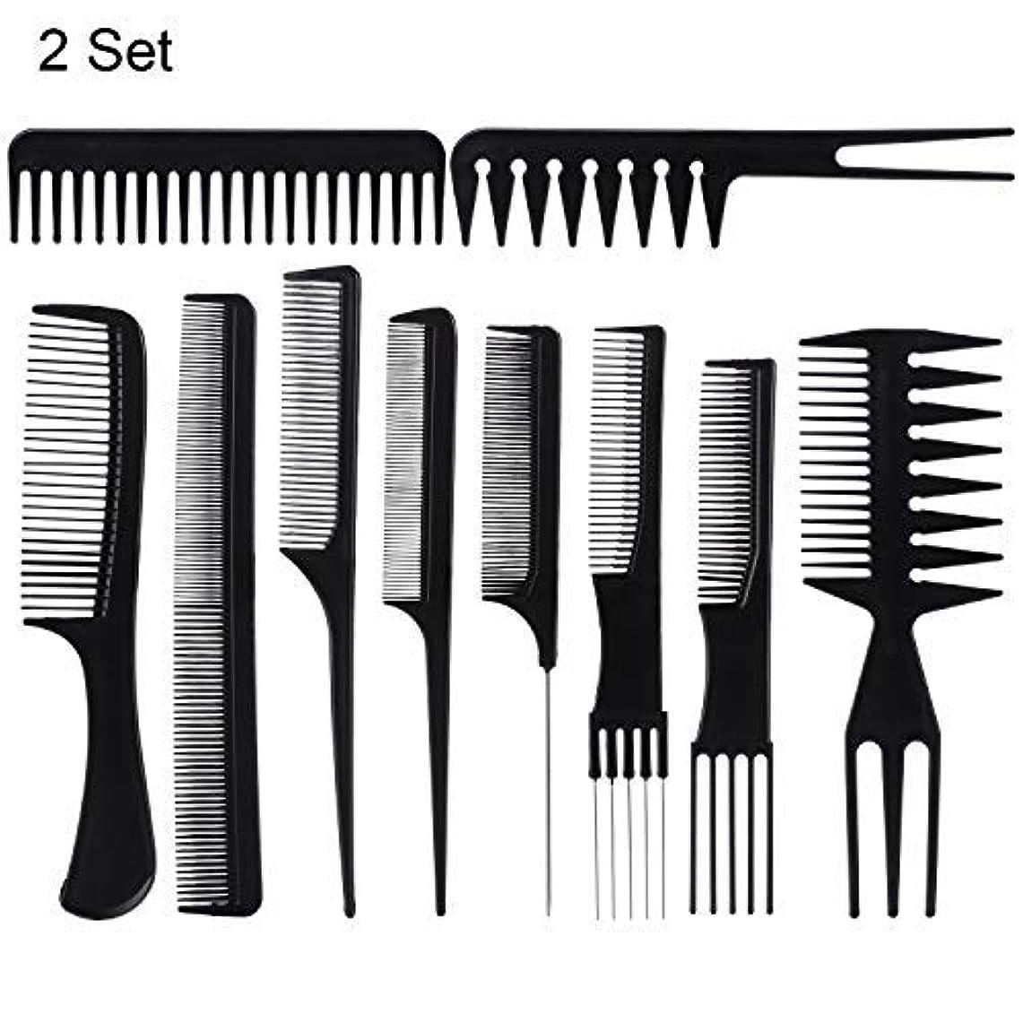 塗抹大きなスケールで見ると価値のない20 Piece Professional Styling Comb Set for Making hair style [並行輸入品]