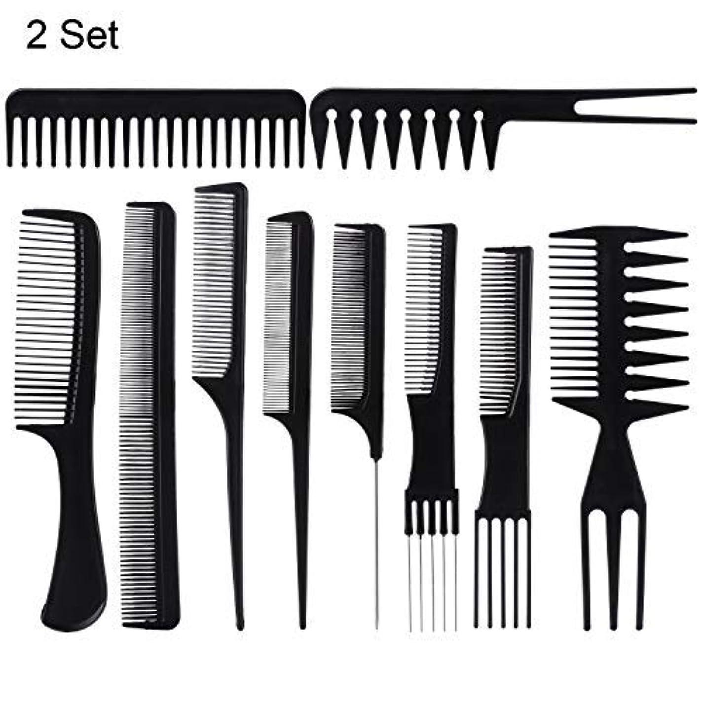 階層グラフ平衡20 Piece Professional Styling Comb Set for Making hair style [並行輸入品]