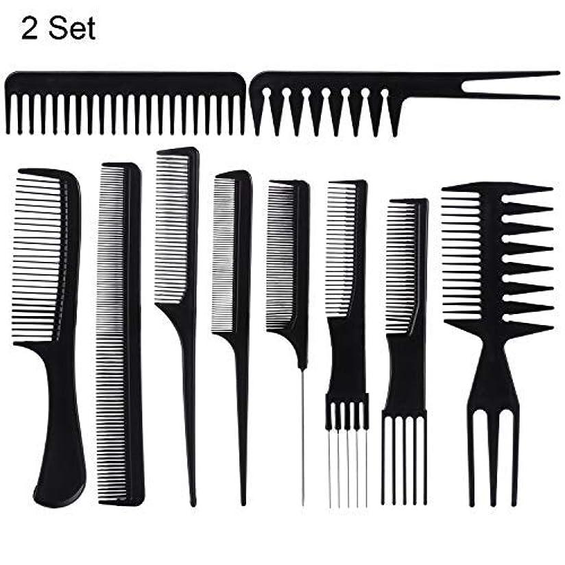 相対性理論筋肉の保護する20 Piece Professional Styling Comb Set for Making hair style [並行輸入品]