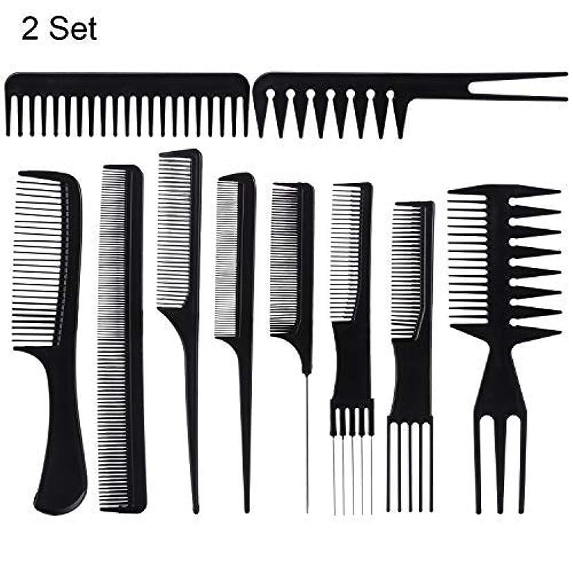 賠償スクラップブックファッション20 Piece Professional Styling Comb Set for Making hair style [並行輸入品]