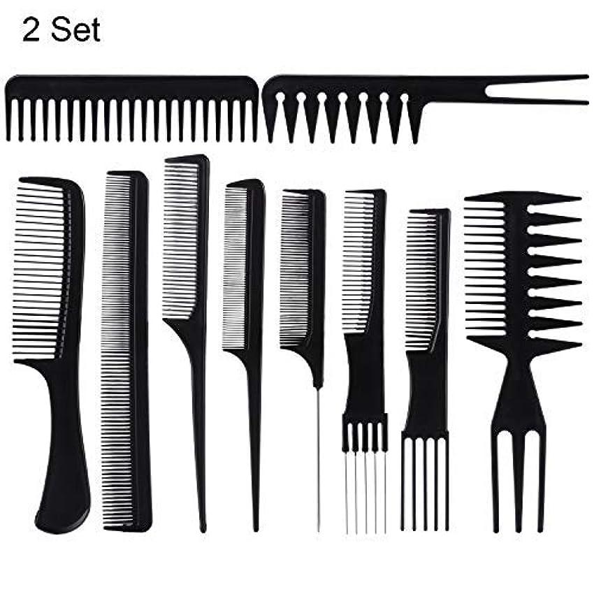 悔い改め栄養肉屋20 Piece Professional Styling Comb Set for Making hair style [並行輸入品]