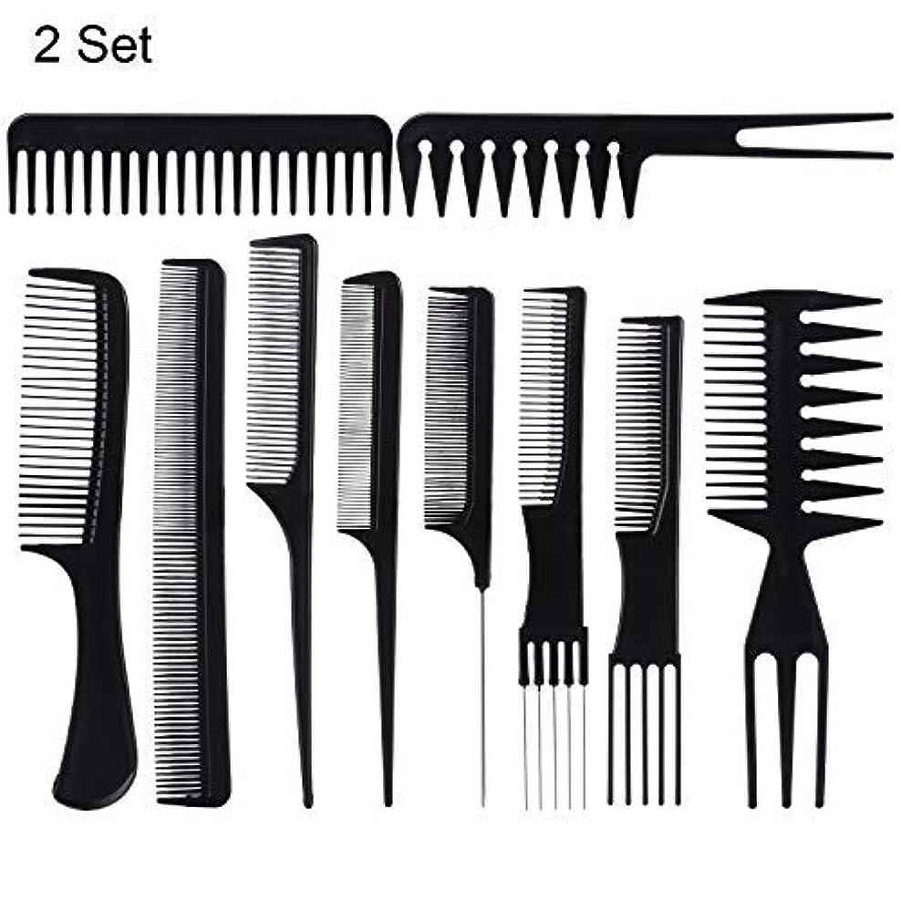 泥ベアリング愛されし者20 Piece Professional Styling Comb Set for Making hair style [並行輸入品]