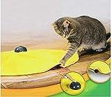 猫おもちゃ 電動 猫じゃらし 猫用電動おもちゃ 猫用遊ぶ盤 ペット 遊ぶ盤 ペット玩具 電動ぐるぐる スピードが調節でき 遊び 知育 ストレス解消 運動不足 猫ちゃん大興奮 組み立て 簡単Cat's Meow イエロー