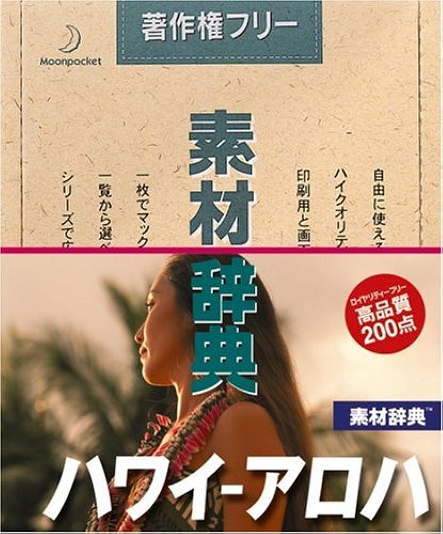 硬化するアドバンテージ古風な素材辞典 Vol.140 ハワイ~アロハ編