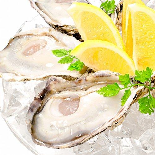 築地の王様 牡蠣 殻付き 生牡蠣 12個入り 生食用 冷凍殻付き牡蠣 新製法で冷凍なのに生食可能