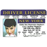 Audrey Hepburn Fun Fake ID License by Signs 4 Fun [並行輸入品]