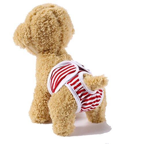 WENGSHILIN ペット 犬用 生理 パンツ サニタリー 衛生 しつけ用品 安心パンツ ワンコ服 犬服 発情期用 雌、雄犬用 (L, レッド)