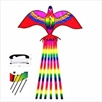 QiaoLiang 2.2 M Phoenix Kite for Flying With Long Rainbow Taill