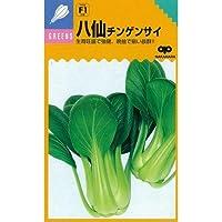ちんげん菜 種 八仙 小袋(約20ml)