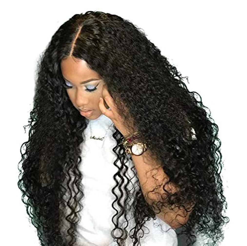 コマンド残高ニンニクブラジルレースかつらカーリーウェーブグルーレスレースかつら前頭かつら女性130%密度ブラジルカーリー人間の髪の毛黒26インチ