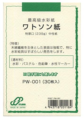 ミューズ はがき用紙 ポストカードパック PW-001 ワトソン紙 239g 30枚入