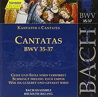 Cantatas Bwv 35-37