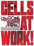 はたらく細胞 2(完全生産限定版)[DVD]