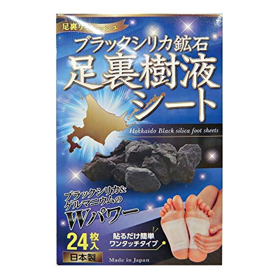 印刷するゾーンなめらかブラックシルカ配合 足裏樹液シート(24枚)