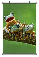 ハッピーツリーカエル 動物の写真ポスター掛け軸(60cmx90cm)