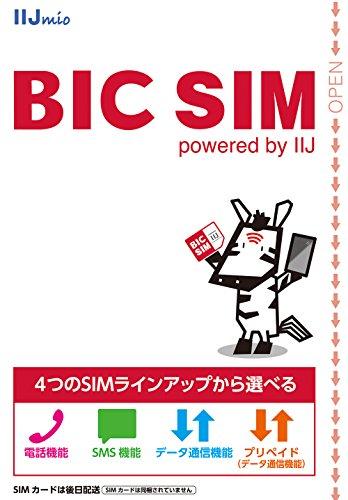 BIC SIM 全プラン 全SIMサイズ対応パッケージ(Wi2 300無料特典付き) IM-B196