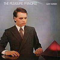 Pleasure Principle [12 inch Analog]